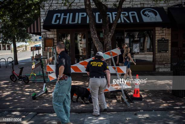 An ATF K9 unit surveys the area near the scene of a shooting on June 12, 2021 in Austin, Texas. At least 13 people were taken to hospitals after a...