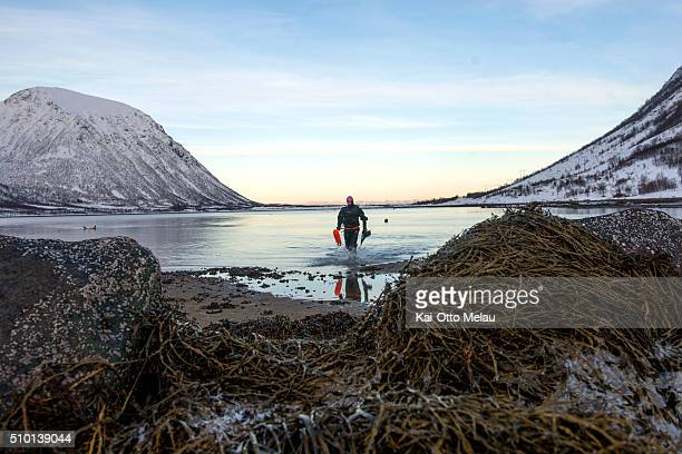 An athlete coming out of the water on February 13 2016 in Svolvar Norway Athletes choose to swim in a drysuit due to the cold water in the fjord The...
