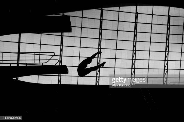 An athlete dives into the pool during a Great Britain Diving Team Launch in the London Aquatics Centre at Queen Elizabeth Olympic Park on April 11...