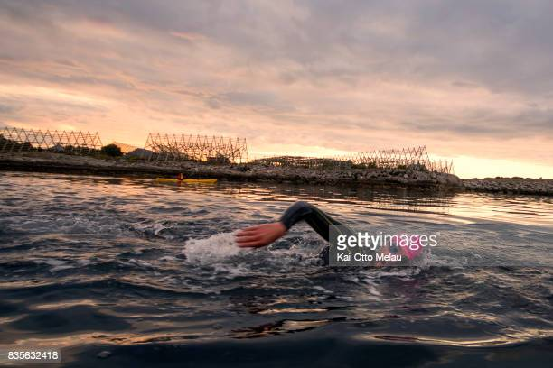 An athlete in the water at the swimleg at The Arctic Triple // Lofoten Triathlon Extreme distance on August 19 2017 in Svolvar Norway Lofoten...