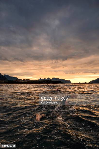An athlete swim towards the sunrise at The Arctic Triple // Lofoten Triathlon Extreme distance on August 19 2017 in Svolvar Norway Lofoten Triathlon...