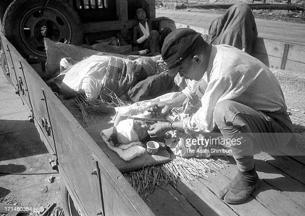 An atomic bomb surviver is given a rice ball as she is carried by a truck to suburb of Hiroshima as their injuries seem not serious than others, on...