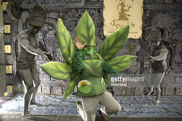 An attendee dressed like a marijuana leaf stands with Pak' al Seeds mascots during the ExpoWeed exhibit at the World Trade Center in Mexico City...