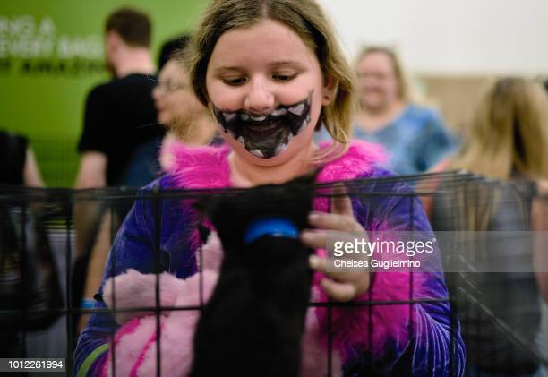 An attendee looks at a cat up for adoption at CatCon Worldwide 2018 at Pasadena Convention Center on August 4 2018 in Pasadena California