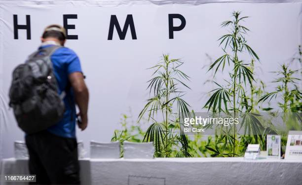 An attendee stops at the Hemp Magazine booth at the Southern Hemp Expo at the Williamson County Agricultural Exposition Park in Franklin TN on...