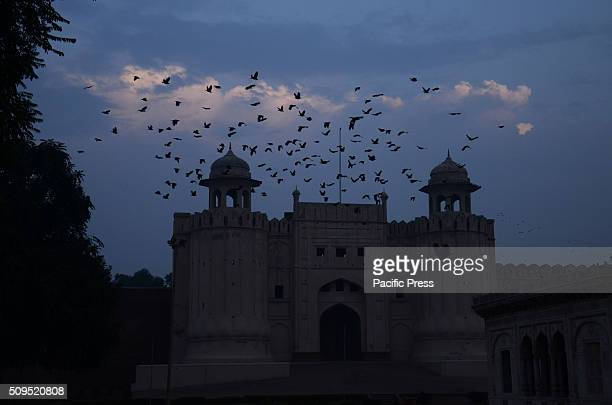 60 Top Lahore Fort Pictures, Photos, & Images - Getty Images