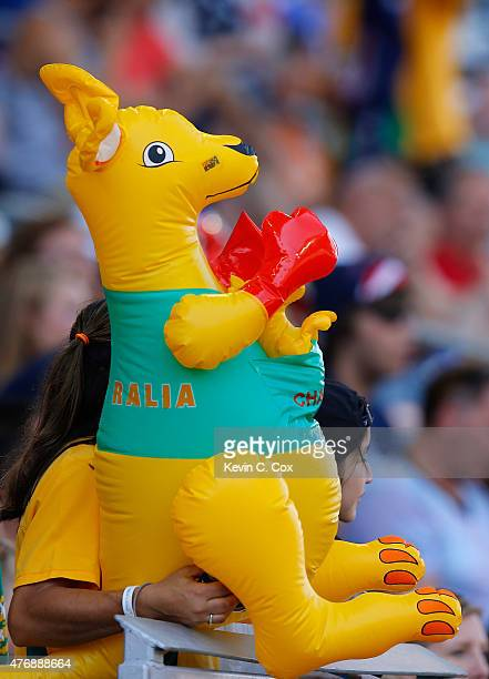 An Australia fan look on prior to the FIFA Women's World Cup Canada 2015 match between Australia and Nigeria at Winnipeg Stadium on June 12 2015 in...