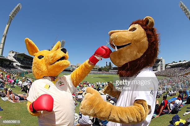 An Australian kangaroo mascot and English Lion mascot pose during day three of the Third Ashes Test Match between Australia and England at the WACA...