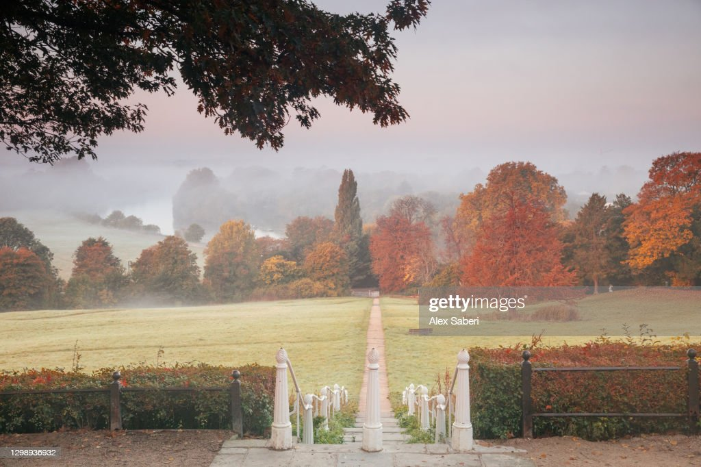 An autumn misty sunrise on Richmond hill. : Stock Photo