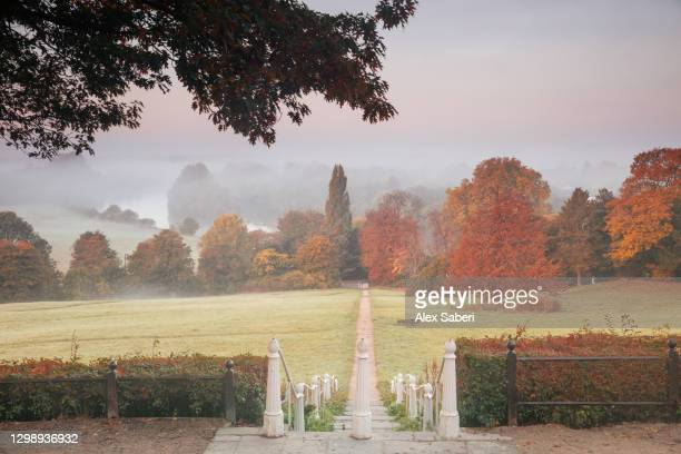 an autumn misty sunrise on richmond hill. - alex saberi stock pictures, royalty-free photos & images