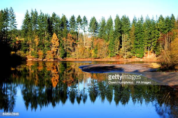 An autumn reflection at Kielder Water Forest Park Newcastle Northumberland The Park is home to the biggest manmade lake in northern Europe and the...
