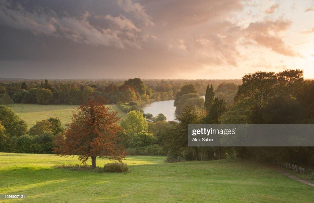 An autumn sunset on Richmond hill. : ストックフォト
