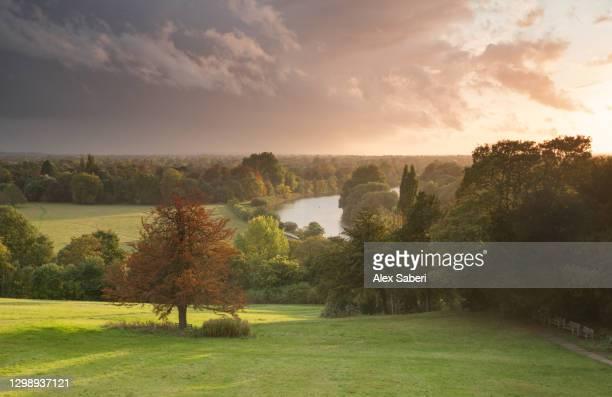 an autumn sunset on richmond hill. - alex saberi - fotografias e filmes do acervo