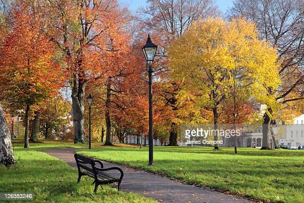 An Autumn view of Christchurch Green in Clifton Village, Bristol.