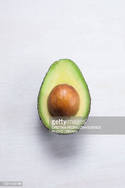 an avocado cut in half - avocado stock pictures, royalty-free photos & images