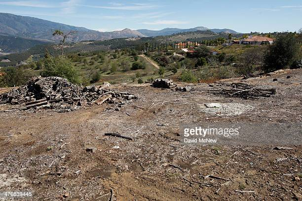 An avocado grove that was cut down because of the rising cost of water is seen on March 5 2014 near Valley Center California The Chipotle restaurant...