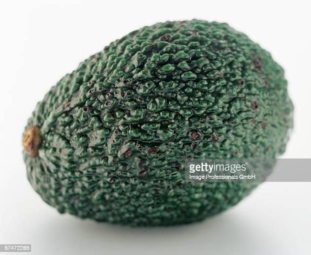 An Avocado