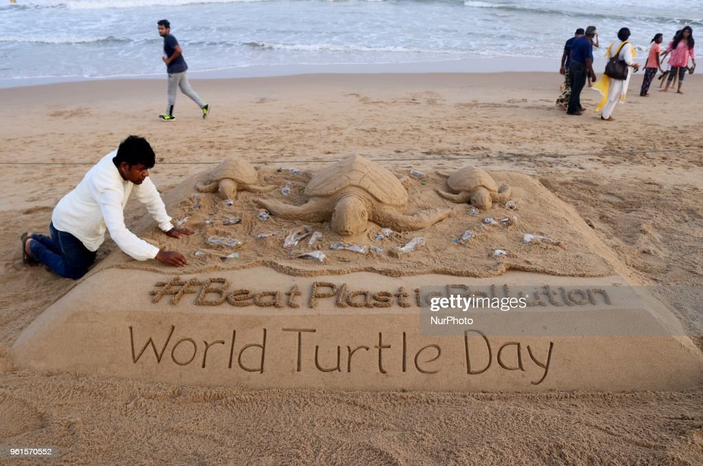 World Turtles Day