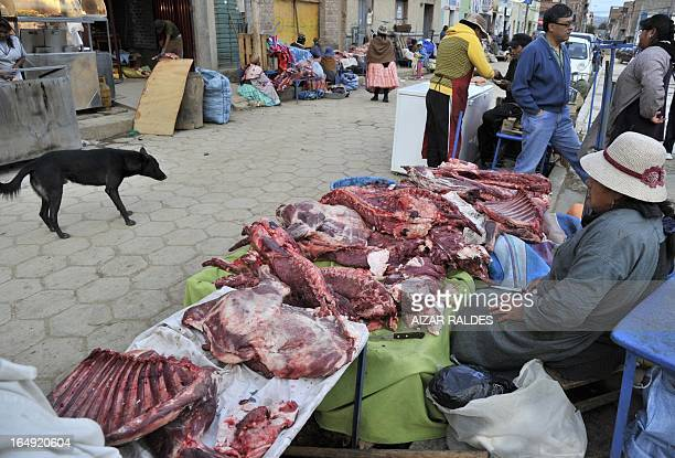 An Aymara woman sells llama meat at her stall in a public market in La Paz on March 15 2013 Rich in proteins but with low in fat the llama meat...