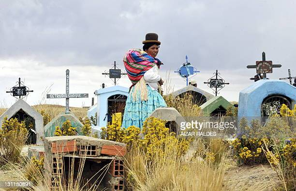 An Aymara woman walks at the Villa Ingenio cemetery in El Alto, 25 Km west of La Paz, on November 2, 2011 during the religious festivity of the Day...