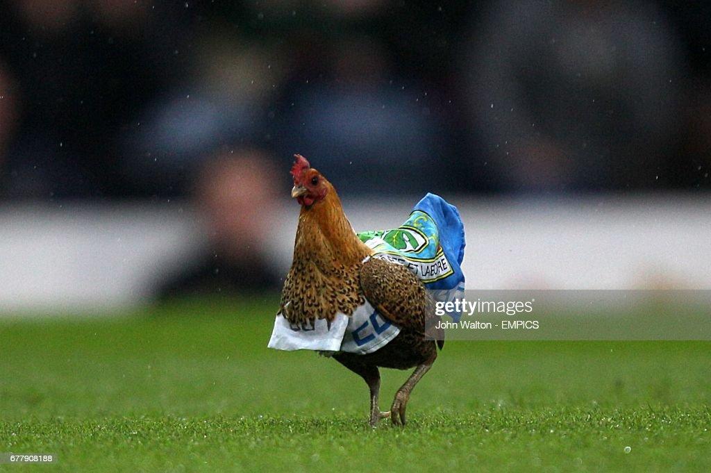 Soccer - Barclays Premier League - Blackburn Rovers v Wigan Athletic - Ewood Park : News Photo