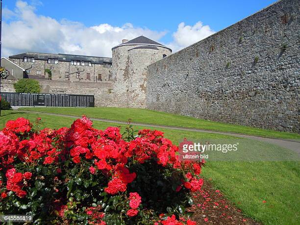 An den Mauern der historischen Burg befindet sich eine meterlange Gedenktafel mit den Namen aller Ofer des Ersten Weltkrieges aus der Region am 25...