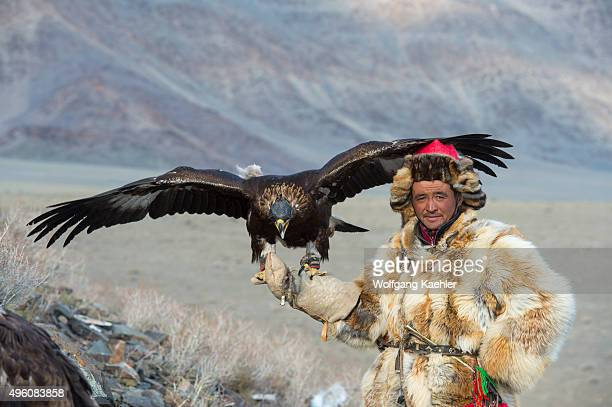 An eagle hunter is waiting on a hill to release the eagle during the competition at the Golden Eagle Festival near the city of Ulgii in the...