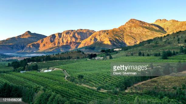 An early morning aerial view of the Anthonij Rupert Wyne's vineyards at the Altima estate on February 22, 2020 in the the Elandskloof valley in the...