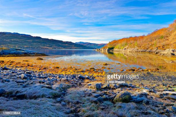 An early morning autumnal view of Loch Sunart in the Ardnamurchan Peninsula in Lochaber