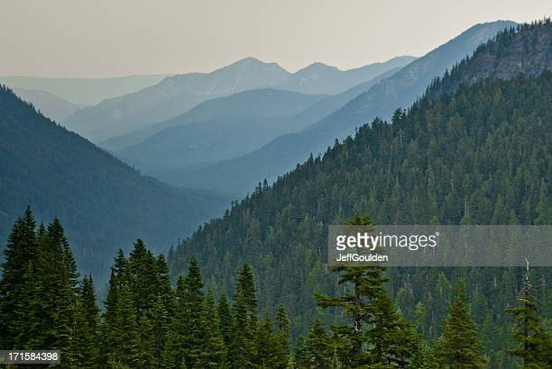 Nebbia di mattina in montagna