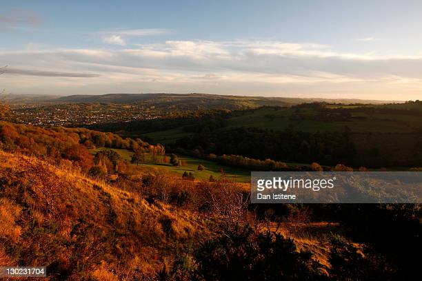 An early morning view of the upper slopes of Leckhampton Hill in the Cotswolds on October 25, 2011 in Cheltenham, England. The hill, which lies to...