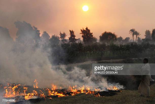 An Egyptian farmer burns hay stubbles as the sun sets over the Nile delta village of Damerah near alMansura City 130 kms north of Cairo 20 October...