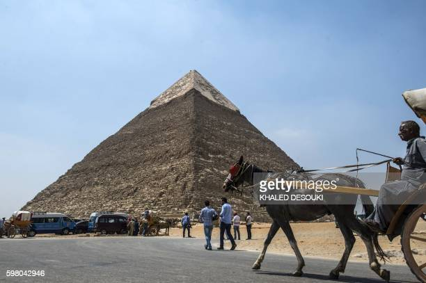 An Egyptian rides his cart past the pyramid of Khafre on August 31 2016 on the Giza Plateau on the southwestern outskirts of the capital Cairo / AFP...