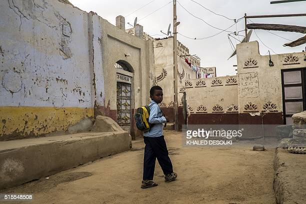 An Egyptian school boy looks at the camera as he walks in Gharb Aswan village near Aswan 900 kilometres south of the capital Cairo on March 13 2016 /...