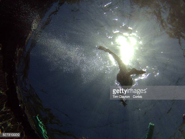 An eight year old boy swimming underwater in his back yard family swimming pool Connecticut USA Photo Tim Clayton