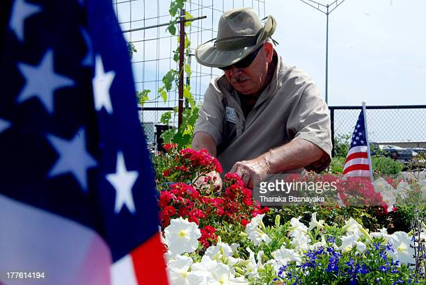 CONTENT] An elderly American is seen gardening at a 'Veteran's Garden' in action near a local market in Oklahoma USA June 9 2012