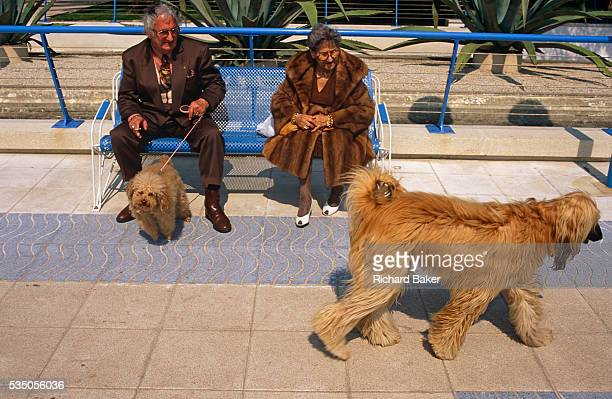 An elderly and eccentric couple sit on a park bench in the French Mediterranean resort of JuanlesPins near Antibes with their own pet dog on a lead...