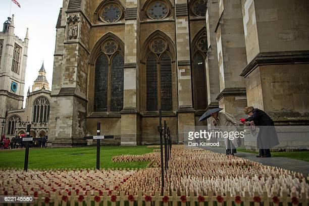 An elderly couple try to find a name amongst the poppies and crosses at the Fields of Remembrance at Westminster Abbey on November 10, 2016 in...