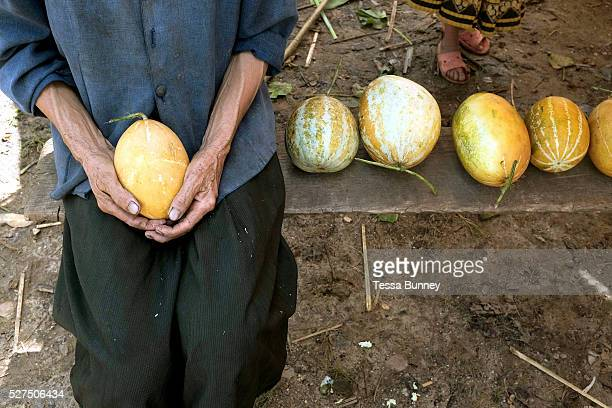 An elderly Hmong woman selling homegrown melons at her roadside stall in Houaphan province Lao PDR Upland rice is the main crop grown by Lao shifting...