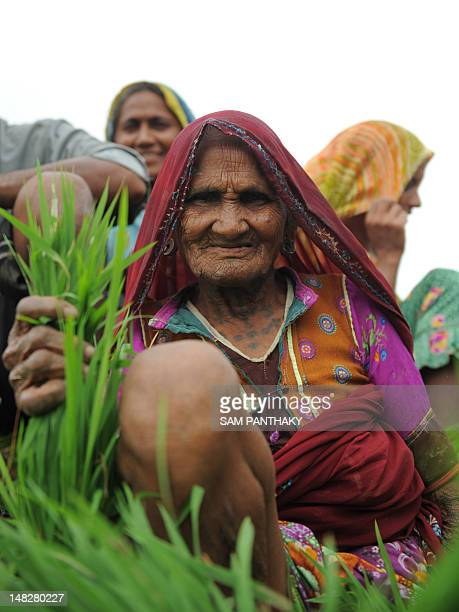 An elderly Indian farmer poses on a tractor trailer as she and others head to the fields to plant rice paddy near Narimanpura village some 30 kms...