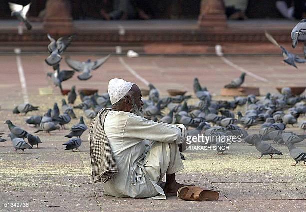 An elderly Indian Muslim sits amidst pigeons in Delhi's main Jama Masjid mosque 09 October 2001 India's top Muslim cleric Shahi Imam Ahmed Bukhari...
