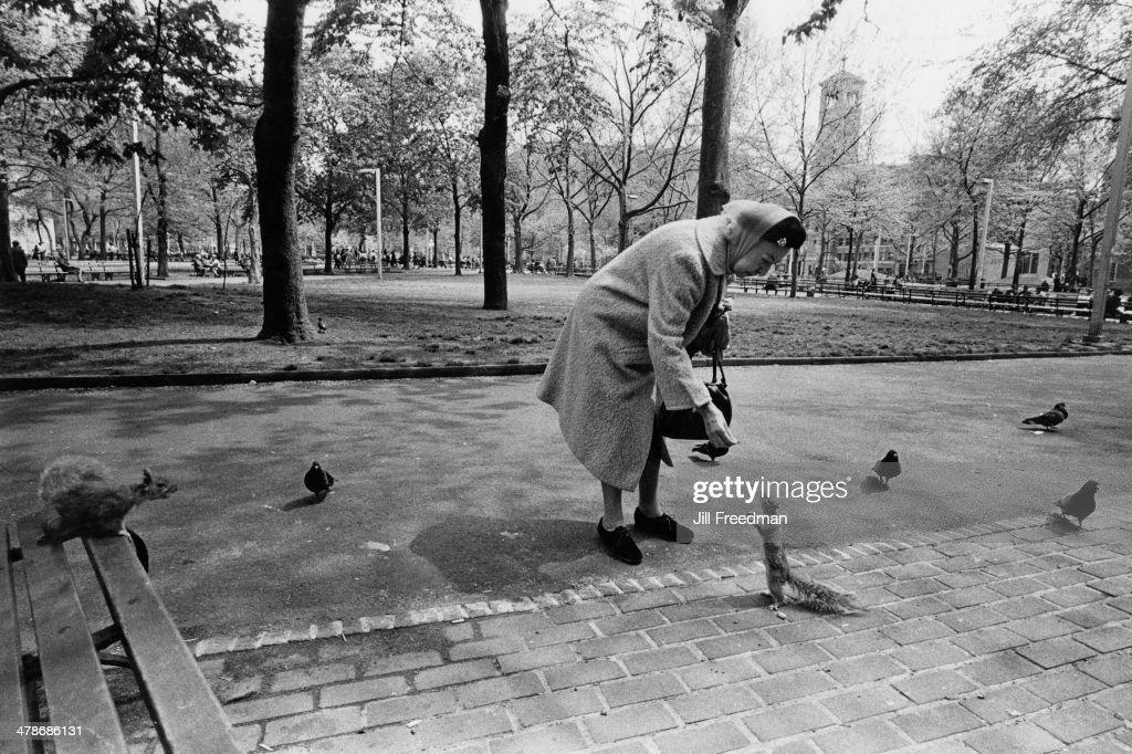 An elderly lady feeding a squirrel in Washington Square Park, Greenwich Village, New York City, 1972.