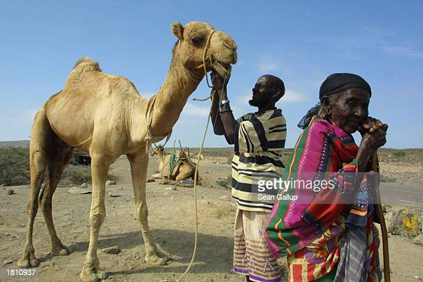 An elderly nomad woman and her son stand by the side of the Tadjoura Highway with their camels February 23 2003 in central Djibouti The tiny nation...