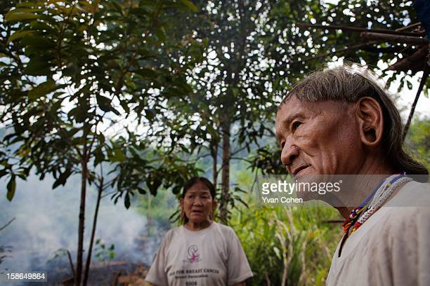 An elderly Penan couple Maleng and Bulan stand close to a field that they are clearing for cultivation Traditionally the Penan are nomadic hunters...