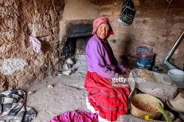 condiciones de vida de una anciana de la etnia india raramuri en el norte de méxico - tarahumara fotografías e imágenes de stock