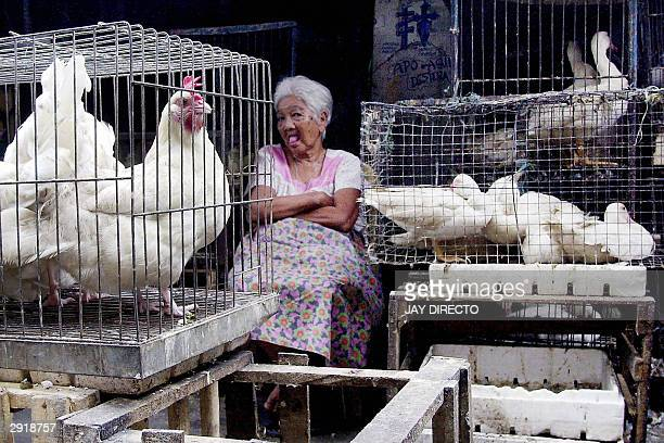 44 Women Killing Chicken Pictures, Photos & Images - Getty