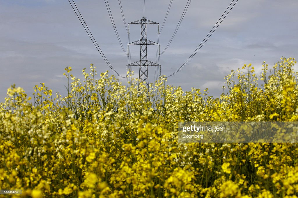 An electricity pylon carries high voltage power lines across a field of rapeseed in Hampshire, U.K., on Wednesday, May 19, 2010. Electricity use may have peaked today at 45,030 megawatts, reducing the cushion of spare capacity available to the network to 7,466 megawatts, according to data from National Grid Plc. Photographer: Rupert Hartley/Bloomberg via Getty Images