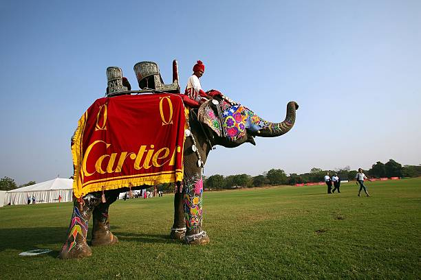 Cartier Holds Elephant Polo Match In India