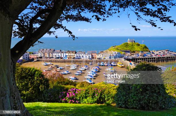 An elevated view of Ilfracombe harbour in North Devon.