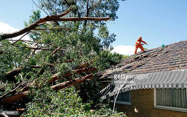 An emergency worker helps to secure a house after a giant gum tree crashed into the roof as the houseowner slept inside during a freak storm in a...